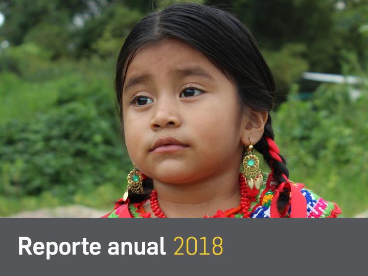 reporte 2018 1
