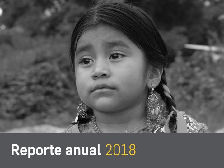 reporte 2018 2